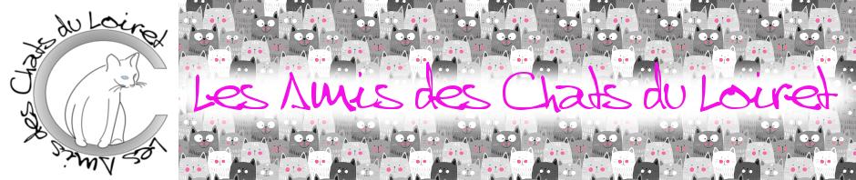 Les Amis des Chats du Loiret